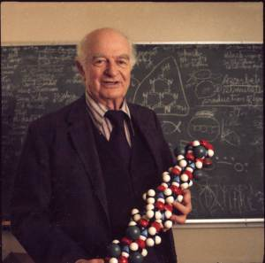 Linus Pauling, Premio Nobel de Química 1954 Premio Nobel de la Paz 1962
