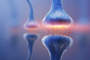 Quiropráctica y el aumento de la fuerza muscular y el impulso cortical